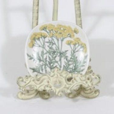 Arabia Botanica koristelautanen, Pietaryrtti, suunnittelija Esteri Tomula, Pietaryrtti, pieni, serikuva