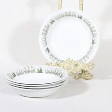 Arabia Polaris lautaset, 5 kpl, suunnittelija Raija Uosikkinen, syvä, siirtokuvakoriste