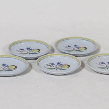 Arabia Windflower lautaset, käsinmaalattu, 5 kpl, suunnittelija Olga Osol, käsinmaalattu, pieni