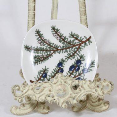 Arabia Variksenmarja koristelautanen, Variksenmarja, suunnittelija Kerttu Nurminen, Variksenmarja, pieni, serikuva