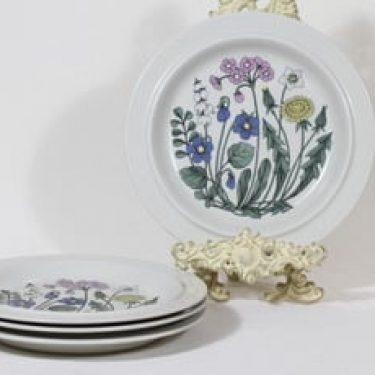 Arabia Flora lautaset, matala, 4 kpl, suunnittelija Esteri Tomula, matala, serikuva