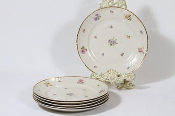 Arabia Rosita lautaset, matala, 6 kpl, suunnittelija Svea Granlund, matala, siirtokuva, kultakoriste