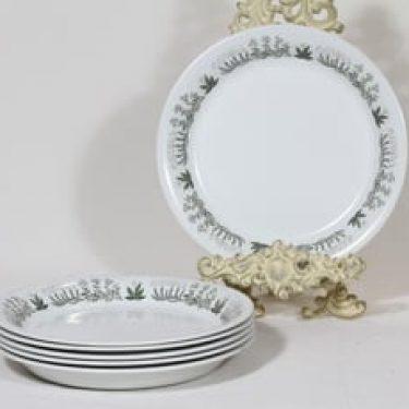 Arabia Polaris lautaset, matala, 6 kpl, suunnittelija Raija Uosikkinen, matala, siirtokuvakoriste