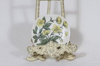 Arabia Botanica koristelautanen, Niittyleinikki, suunnittelija Esteri Tomula, Niittyleinikki, pieni, serikuva