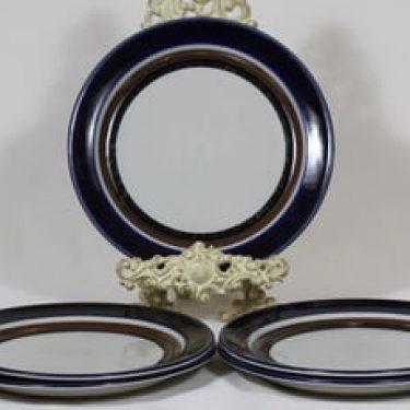Arabia Saara lautaset, matala, 5 kpl, suunnittelija Anja Jaatinen-Winquist, matala, erikoiskoriste