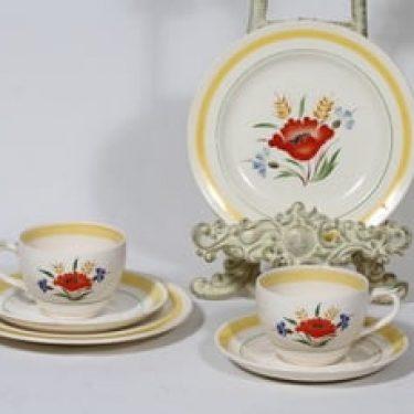 Arabia Kesä kahvikupit ja lautaset, käsinmaalattu, 2 kpl, suunnittelija , käsinmaalattu