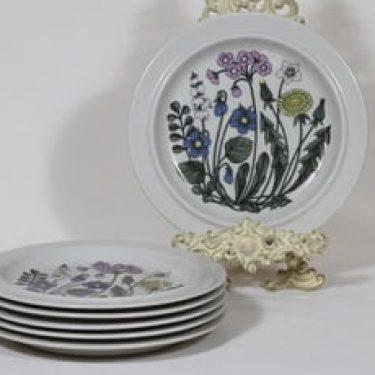 Arabia Flora lautaset, matala, 6 kpl, suunnittelija Esteri Tomula, matala, serikuva