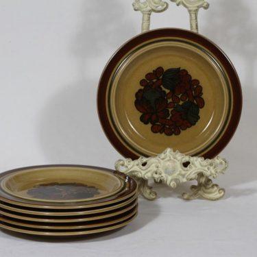 Arabia Otso lautaset, pieni, 6 kpl, suunnittelija Raija Uosikkinen, pieni, erikoiskoriste, retro