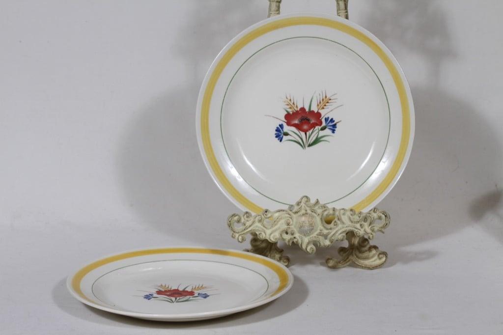 Arabia Kesä lautaset, matala, 2 kpl, suunnittelija Rainer Baer, matala, siirtokuva, kukka-aihe, maalattu raita