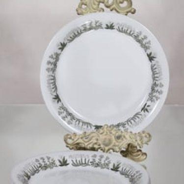 Arabia Polaris lautaset, matala, 5 kpl, suunnittelija Raija Uosikkinen, matala