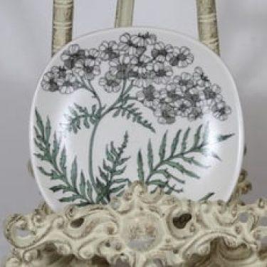 Arabia Botanica koristelautanen, Siankärsämö, suunnittelija Esteri Tomula, Siankärsämö, pieni, serikuva