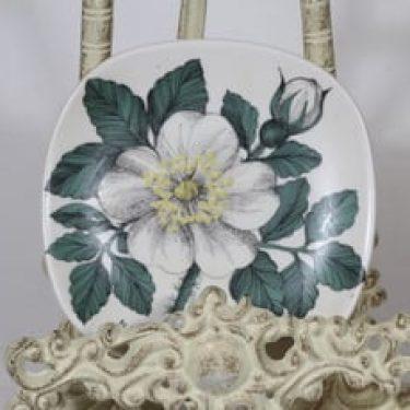Arabia Botanica koristelautanen, Valkoinen ruusu, suunnittelija Esteri Tomula, Valkoinen ruusu, pieni, serikuva