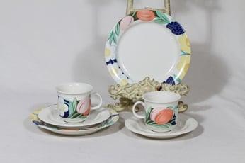 Arabia Arctica Poetica kahvikupit ja lautaset, 2 kpl, suunnittelija Dorrit Von Fieandt, serikuva