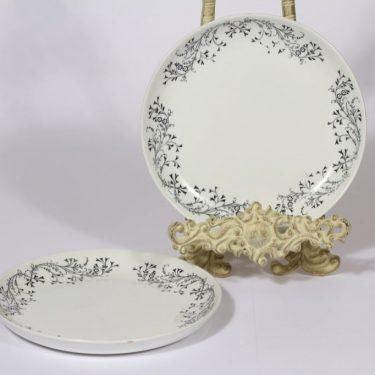 Arabia R2 lautaset, 2 kpl, suunnittelija Raija Uosikkinen, pieni, serikuva