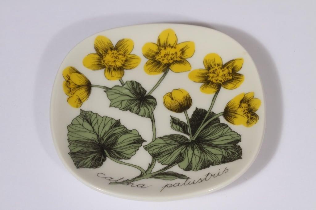 Arabia Botanica koristelautanen, Rentukka, suunnittelija Esteri Tomula, Rentukka, pieni, serikuva