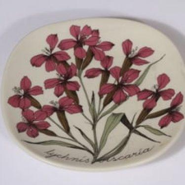Arabia Botanica koristelautanen, Mäkitervakko, suunnittelija Esteri Tomula, Mäkitervakko, pieni, serikuva