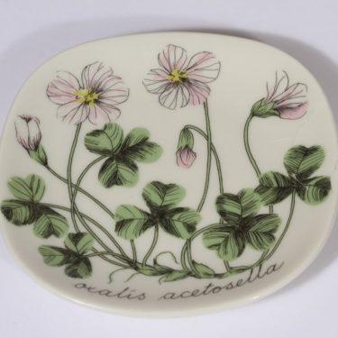 Arabia Botanica koristelautanen, Ketunleipä, suunnittelija Esteri Tomula, Ketunleipä, pieni, serikuva