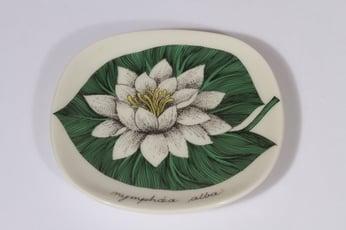 Arabia Botanica koristelautanen, Valkolumme, suunnittelija Esteri Tomula, Valkolumme, pieni, serikuva