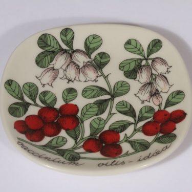 Arabia Botanica koristelautanen, Puolukka, suunnittelija Esteri Tomula, Puolukka, pieni, serikuva