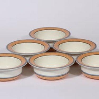 Arabia Arctica Apricos annoskulhot, oranssi, 6 kpl, suunnittelija Inkeri Leivo, serikuva