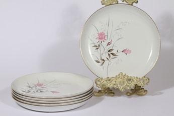 Arabia Heinikki lautaset, matala, 6 kpl, suunnittelija , matala, siirtokuva, matala