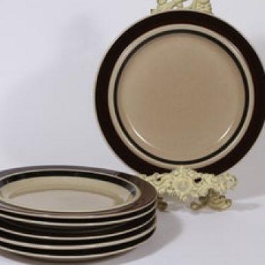 Arabia Ruija lautaset, matala, 6 kpl, suunnittelija Raija Uosikkinen, matala, raitakoriste, matala