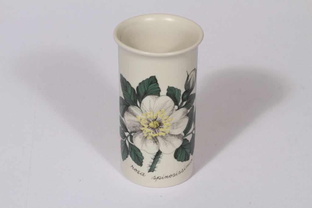 Arabia Botanica maljakko, Valkoinen ruusu, suunnittelija Esteri Tomula, Valkoinen ruusu, serikuva, kukka-aihe