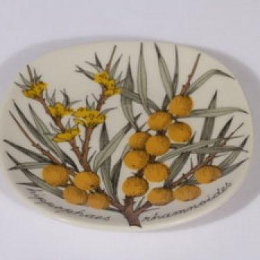 Arabia Botanica koristelautanen, Tyrni, suunnittelija Esteri Tomula, Tyrni, pieni, serikuva