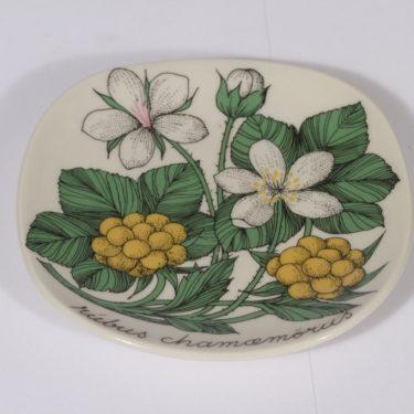 Arabia Botanica koristelautanen, Suomuurain (lakka), suunnittelija Esteri Tomula, Suomuurain (lakka)