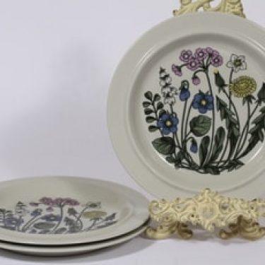 Arabia Flora lautaset, 3 kpl, suunnittelija Esteri Tomula,