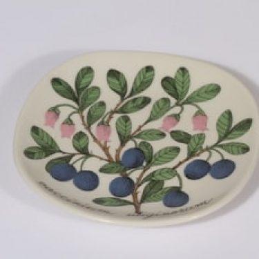 Arabia Botanica koristelaatta, Juolukka, suunnittelija Esteri Tomula, Juolukka, pieni, serikuva