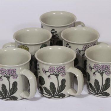 Arabia Flora mukit, 30 cl, 6 kpl, suunnittelija Esteri Tomula, 30 cl, serikuva, kukka-aihe