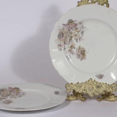 Arabia lautaset, 2 kpl, suunnittelija , siirtokuva, kukka-aihe