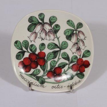 Arabia Botanica koristelaatta, Puolukka, suunnittelija Esteri Tomula, Puolukka, pieni, serikuva