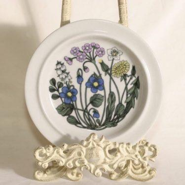 Arabia Flora plates, 5 pcs, designer Esteri Tomula, small