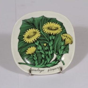 Arabia Botanica koristelautanen, Leskenlehti, suunnittelija Esteri Tomula, Leskenlehti, pieni, kukka-aihe