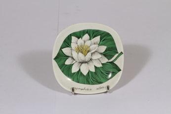 Arabia Botanica koristelautanen, Valkolumme, suunnittelija Esteri Tomula, Valkolumme, pieni, kukka-aihe
