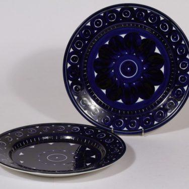 Arabia Valencia lautaset, matala, 2 kpl, suunnittelija , matala, signeerattu, käsinmaalattu