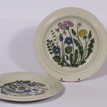 Arabia Flora ruokalautaset, 2 kpl, suunnittelija , serikuva, kukka-aihe