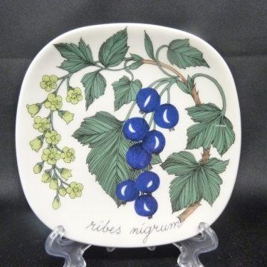 Arabia Botanica koristelautanen, Musta Viinimarja, suunnittelija , Musta Viinimarja, pieni, serikuva