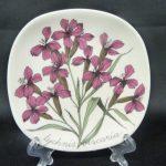 Arabia Botanica koristelautanen, Mäkitervakko, suunnittelija , Mäkitervakko, pieni, serikuva