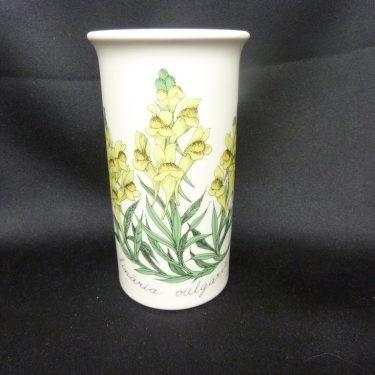 Arabia Botanica maljakko, Keltakannusruoho, suunnittelija Esteri Tomula, Keltakannusruoho, serikuva, kukka-aihe