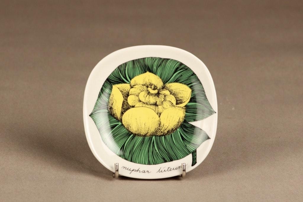 Arabia Botanica koristelautanen, Isoulpukka, suunnittelija Esteri Tomula, Isoulpukka, serikuva, kukka-aihe