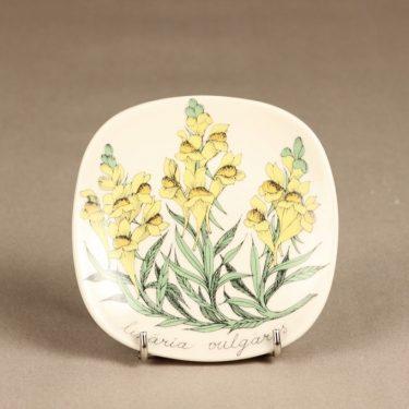 Arabia Botanica koristelautanen, Keltakannusruoho, suunnittelija Esteri Tomula, Keltakannusruoho, serikuva, kukka-aihe