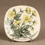 Arabia Botanica koristelautanen, Niittyleinikki, suunnittelija Esteri Tomula, Niittyleinikki, serikuva, kukka-aihe
