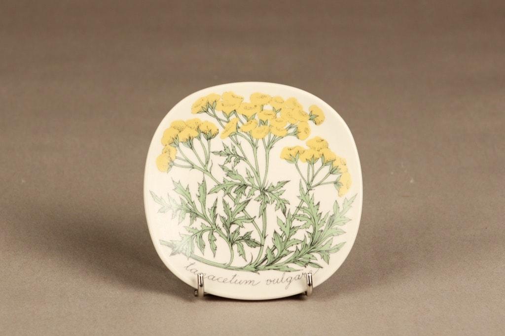 Arabia Botanica koristelautanen, Pietaryrtti, suunnittelija Esteri Tomula, Pietaryrtti, serikuva, kukka-aihe