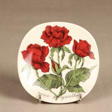 Arabia Botanica koristelautanen, Rosa Polyantha, suunnittelija Esteri Tomula, Rosa Polyantha, serikuva, kukka-aihe
