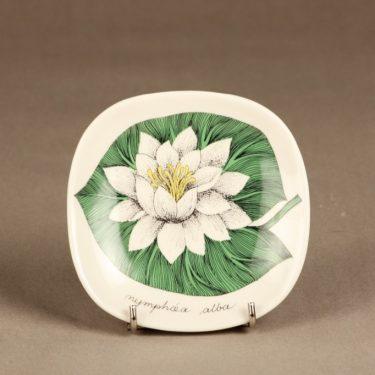Arabia Botanica koristelautanen, Valkolumme, suunnittelija Esteri Tomula, Valkolumme, serikuva, kukka-aihe