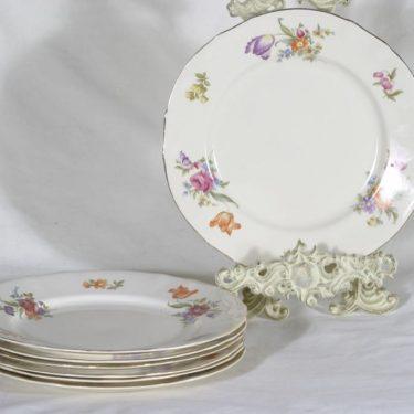 Arabia Kesäkukka lautaset, matala, 8 kpl, suunnittelija , matala, siirtokuva