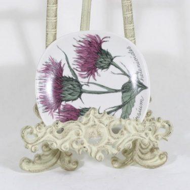 Arabia Botanica koristelautanen, Huopaohdake, suunnittelija Esteri Tomula, Huopaohdake